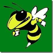 williamsburg hornet football