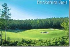 brickshiregolf