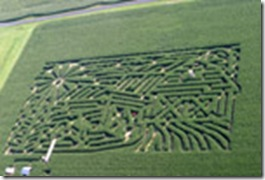 charles city corn Maze renwood fields