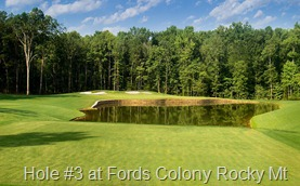 Fords-Colony-RM-Hole-3