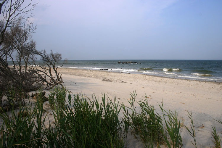 Williamsburg To Virginia Beach - Trip to Beach |Williamsburg Beach