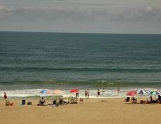 Jamestown Beach - 12 Photos - Beaches - Williamsburg, VA ... |Williamsburg Beach