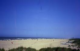 Best Beach: Williamsburg |Williamsburg Beach