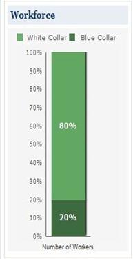 Williamsburg VA Income Chart