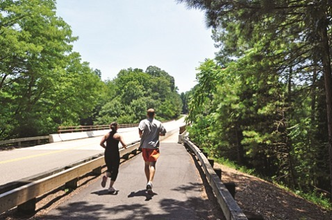 bridge trail
