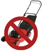 no more lawn mowing in williamsburg va
